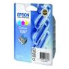 Epson T06704010