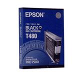 Epson T480011 (T480)