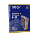 Epson T481011 (T481)