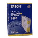 Epson T487011 (T487)